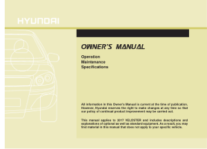 2017 Hyundai Veloster Fs Owners Manual Free Download